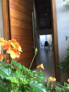 Madre Natura, Apartments  Asuncion - big - 207