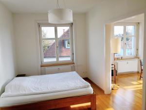 obrázek - Two Rooms Apartment, Spacious and Bright