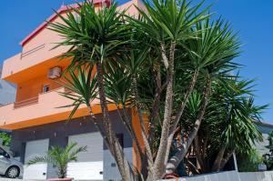 Apartments Villa Sunrise, Ferienwohnungen  Trogir - big - 52