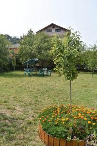 Accommodation in Nedelino