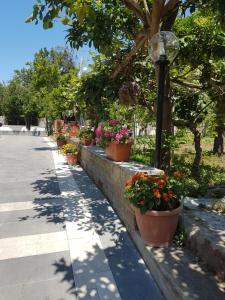 Casa Aristide, Bed & Breakfasts  Sant'Agnello - big - 16