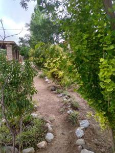 Apapachar, Prázdninové domy  Amaichá del Valle - big - 40
