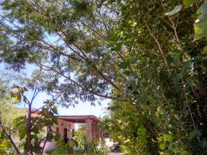Apapachar, Prázdninové domy  Amaichá del Valle - big - 17