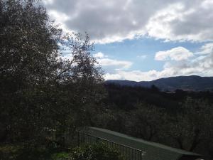 La Collina Degli Ulivi - AbcAlberghi.com