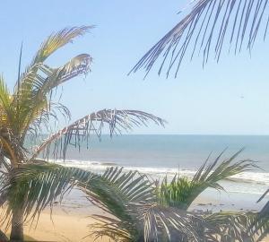 Casa em Praia Deserta, Dovolenkové domy  Costa Dourada - big - 9