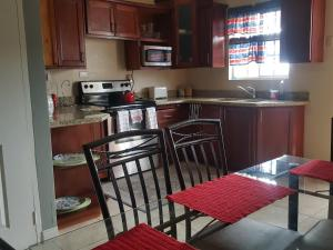 Spacious - elegant Apartment 1B New Kingston - New Kingston