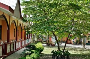 JBR Tourist Inn, Penziony – hostince  Port Barton - big - 49