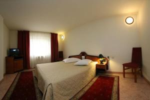 Euro Hotel - Timişoara