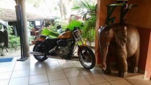 Hotel Napoleon Lagune, Hotely  Lomé - big - 136
