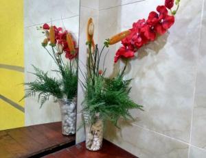 Xua Hostel Santos, Bed & Breakfasts  Santos - big - 11