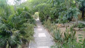 Pousada Casa da Gente, Guest houses  Caruaru - big - 18
