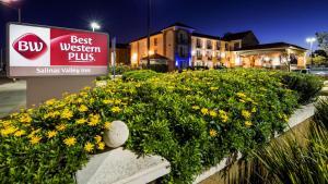 obrázek - Best Western Plus Salinas Valley Inn & Suites