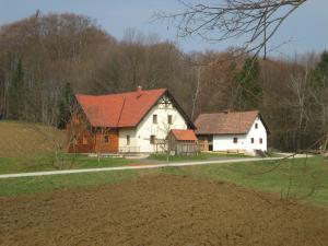 Tourist Farm Rajšp