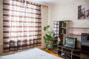 Hrushevsky Apartment Near The Theater, Apartmanok  Ternopil - big - 29