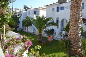 Maistrali Studios Andros Greece