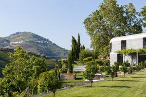 Quinta do Vallado (5 of 95)