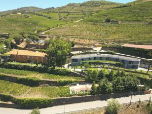 Quinta do Vallado (3 of 95)