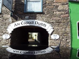An Capall Dubh B&B, Bed and Breakfasts  Dingle - big - 43