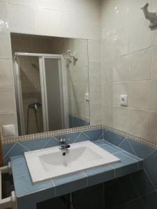 Casa el Francés, Апартаменты/квартиры  Граус - big - 20