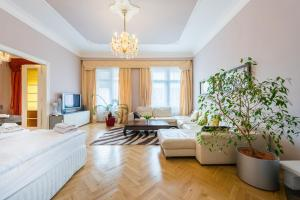 Wenceslas Square Apartment - Praga