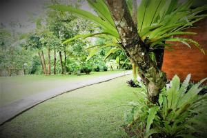 Villa Kendi, Holiday parks  Kalibaru - big - 26