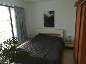Cezar Apartment, Ferienwohnungen  Mamaia - big - 16