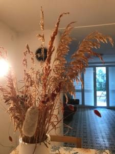 Vittoria's house - AbcAlberghi.com
