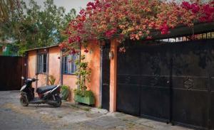 Casa Flor, Prázdninové domy  Panajachel - big - 14