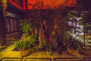 Li Jing Shen Ting Guest House, Affittacamere  Lijiang - big - 55