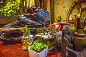 Li Jing Shen Ting Guest House, Affittacamere  Lijiang - big - 31