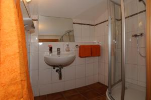 Stögergut by Schladming-Appartements, Апартаменты  Шладминг - big - 12