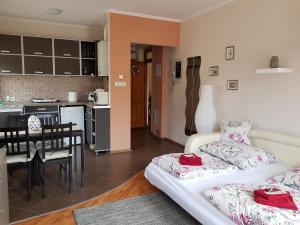 Magnólia Apartman, Apartmány  Gyula - big - 55