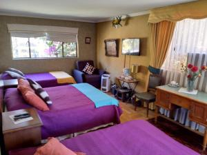 Bed & Breakfast Blumen Haus - Accommodation - Santiago