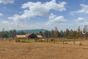 7 Redwood, Дома для отпуска  Санривер - big - 34