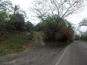 Villa Martina, Holiday parks  Yopal - big - 12