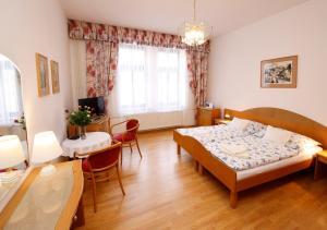 Apartman Moravska - Apartment - Karlovy Vary