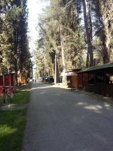 Guesthouse on Kiparisovaya alleya 5, Affittacamere  Pizunda - big - 51
