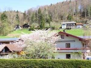 obrázek - Ferienwohnung Apartment Distler Siegsdorf
