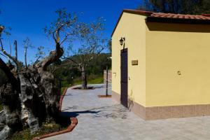 Il Giglio, Vidéki vendégházak  Pettineo - big - 120