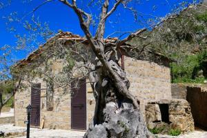 Il Giglio, Vidéki vendégházak  Pettineo - big - 98
