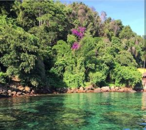 Suites Privativas Ilha Grande