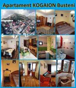 Apartament Kogaion - Apartment - Busteni
