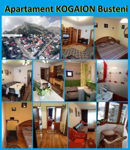 Apartament Kogaion - Apartment - Busteni