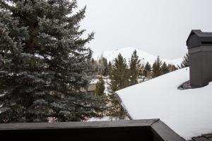 Dollar Meadows #1359, Holiday homes  Sun Valley - big - 38