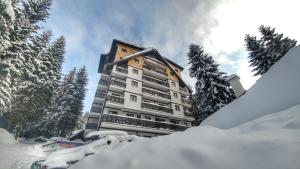 Apartments Zed Vila Zvoncica, Appartamenti  Kopaonik - big - 34