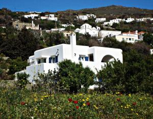 Green view village Andros Greece