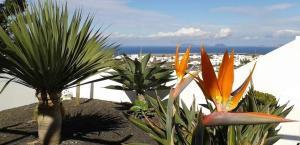 Casa Lancelot, Tinajo - Lanzarote
