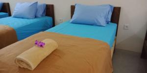 Auberges de jeunesse - Dhipa Vibes Hotel
