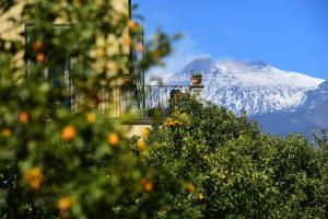 Giardino Arancio - AbcAlberghi.com