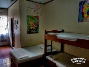 Slow Monkey Hostel, Affittacamere  Playa Santa Teresa - big - 3